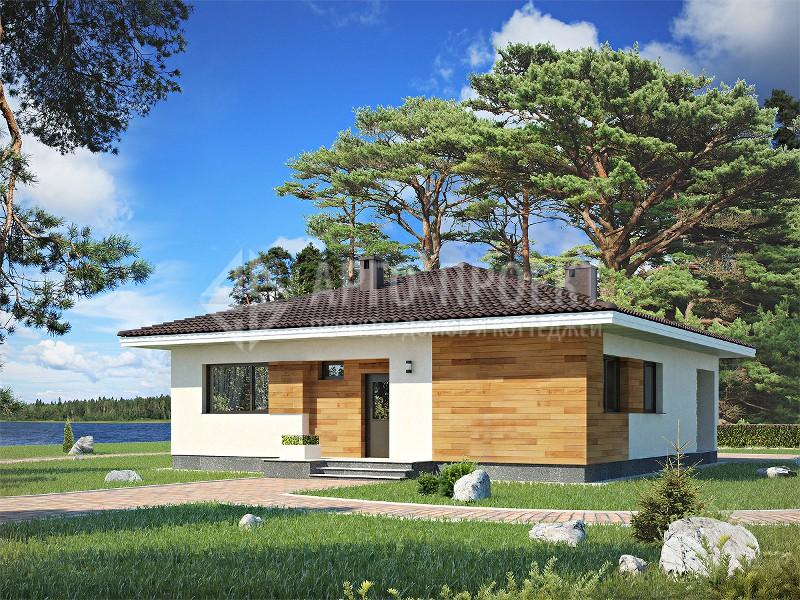 строим дом проекты домов одноэтажных домов