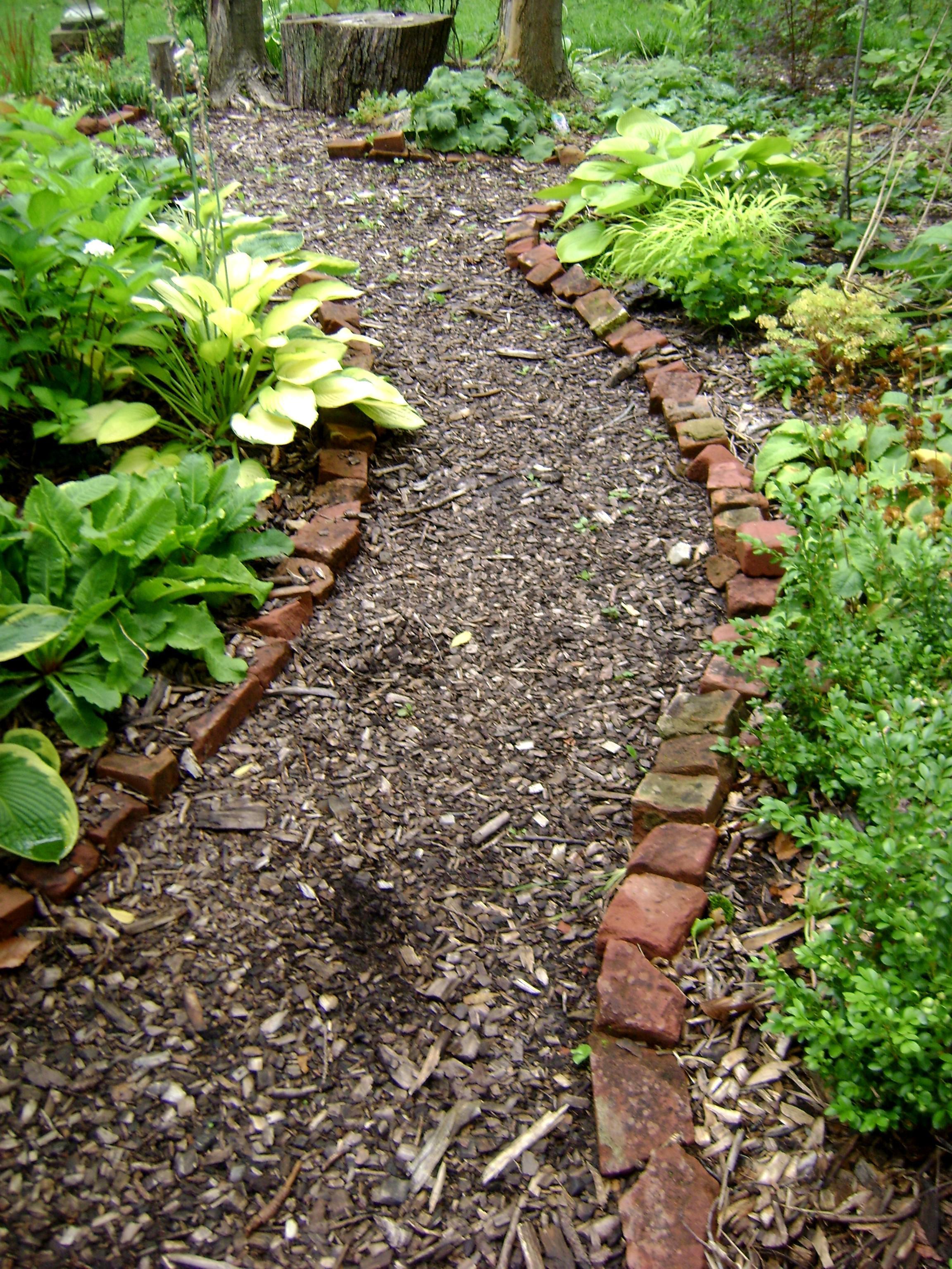 Дорожки в саду своими руками из керамзита